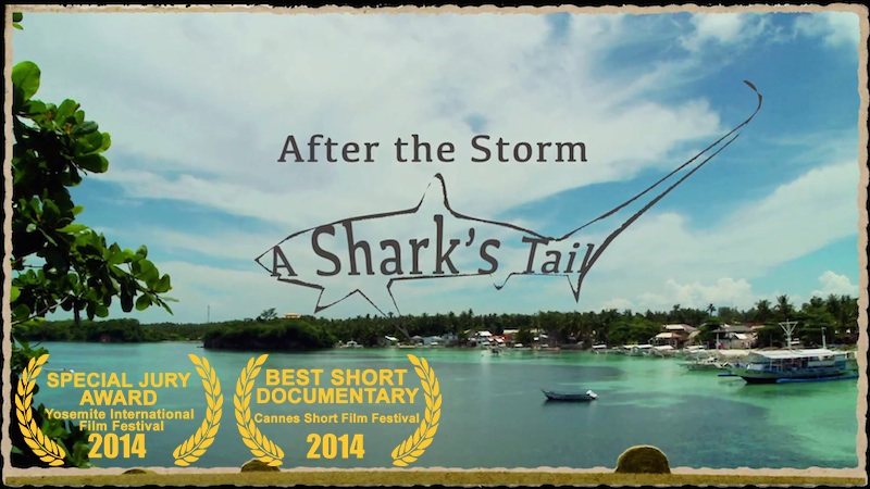 Hope through the Story of a Storm, Scuba Diving, Filmmaking and Sharks (Yeap!)